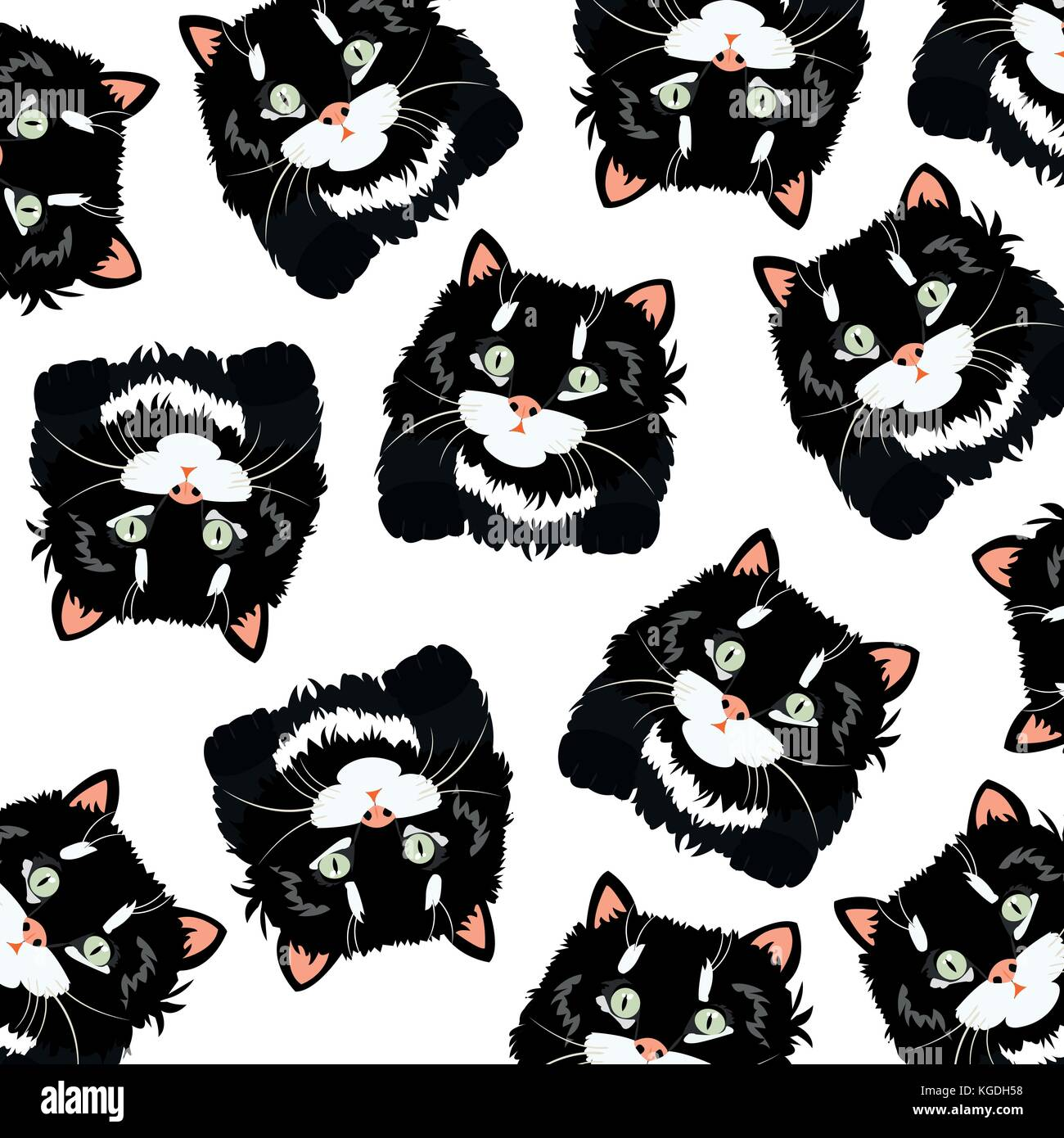Black cats on white background - Stock Vector