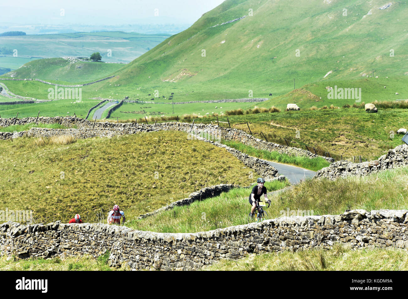 Cyclists cycling in the Yorkshire Dales UK travelling through beautiful scenery near Settle - Stock Image