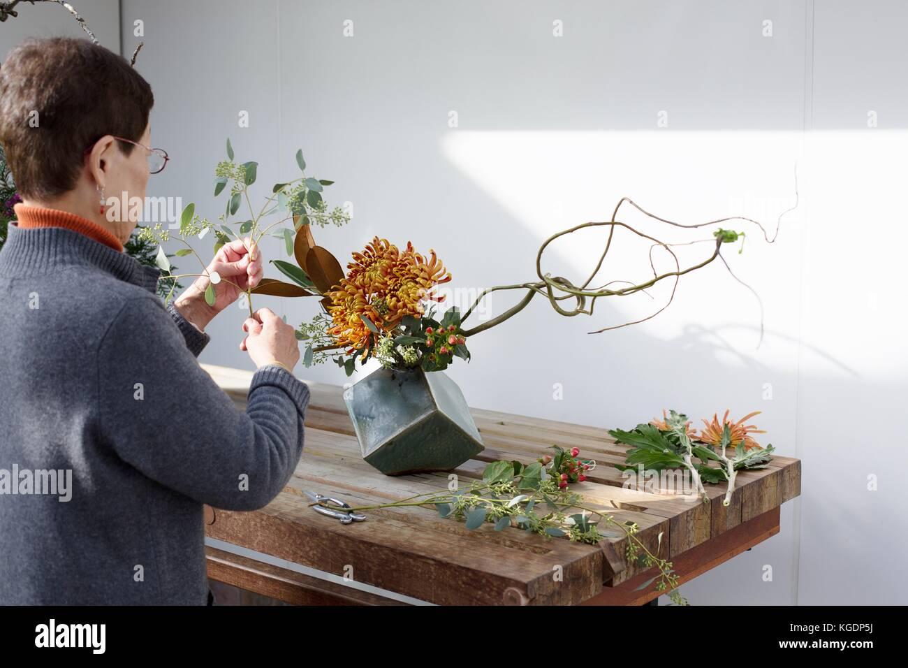 A woman creating an Ikebana flower arrangement at Como Conservatory in St. Paul, Minnesota, USA. - Stock Image