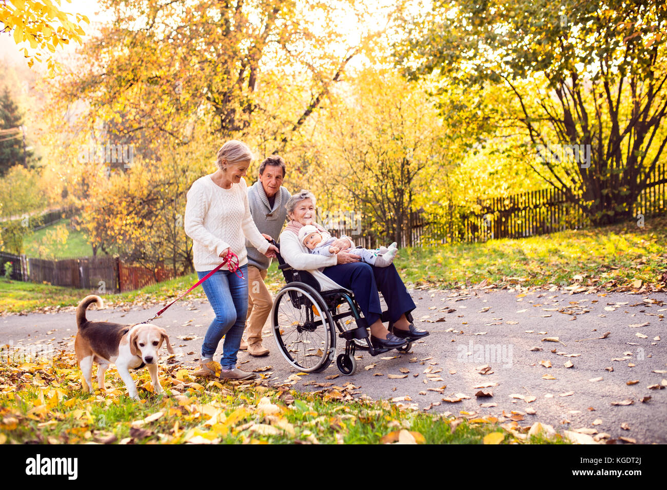 Extended family with dog on a walk in autumn nature. - Stock Image