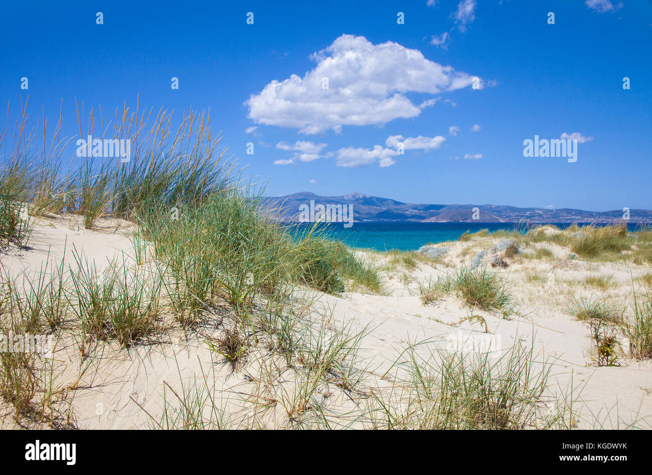Dunes of Petrivo beach, west side of Naxos island, Cyclades, Aegean, Greece - Stock Image