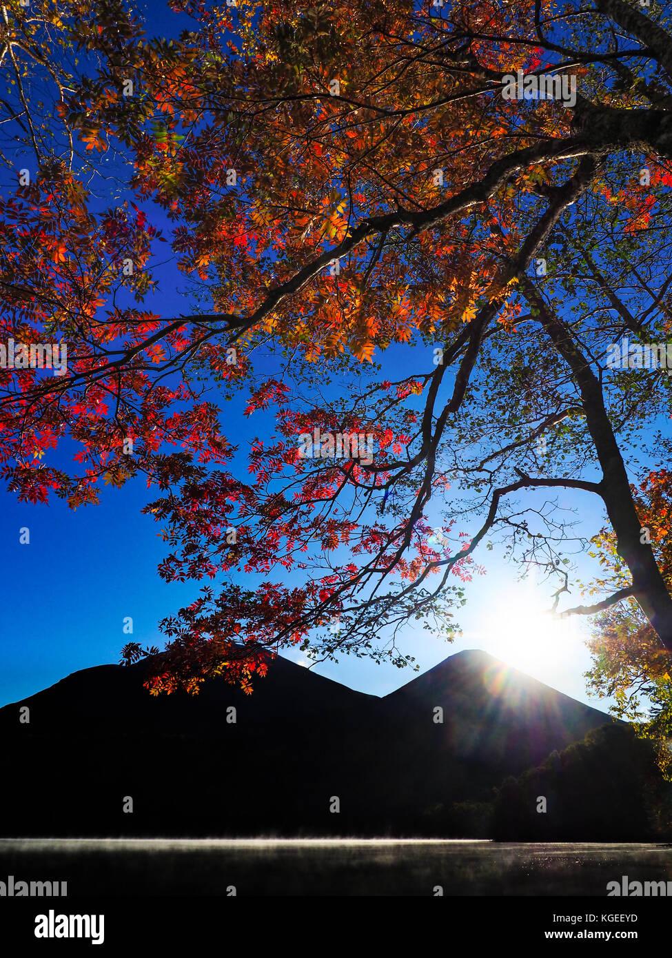Japanese autumn foliage in Akan, Hokkaido, Japan Stock Photo