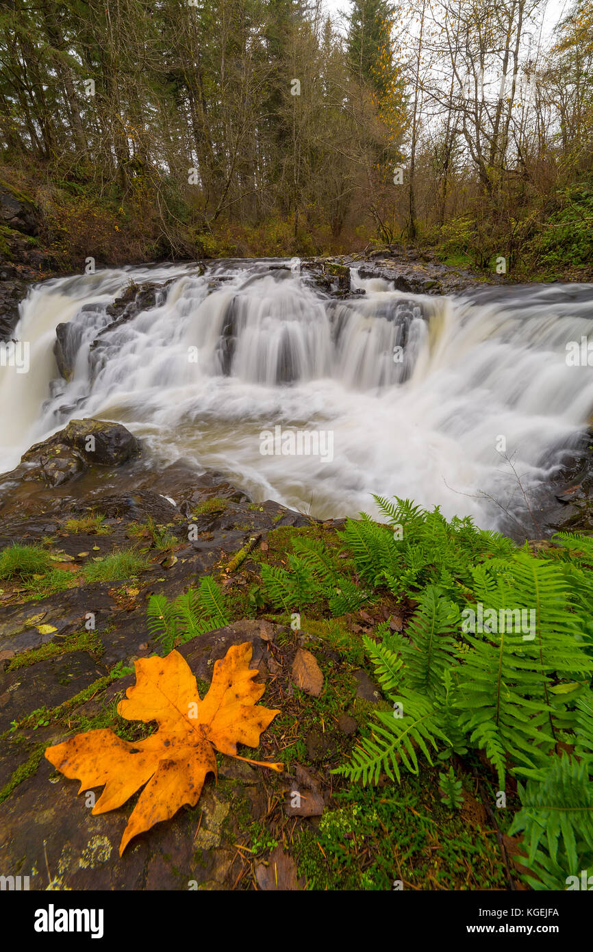 Yacolt Creek Falls at Moulton Falls Regional Park in Clark County Washington State in Fall Season - Stock Image