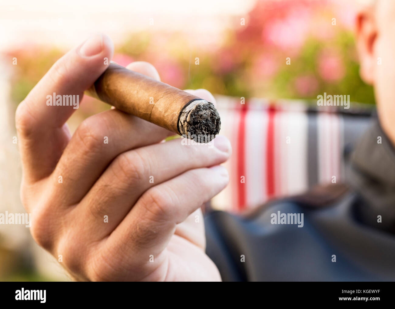 Detail Of The Hand Of A Smoking Man Holding A Burning Cigar In A Garden With