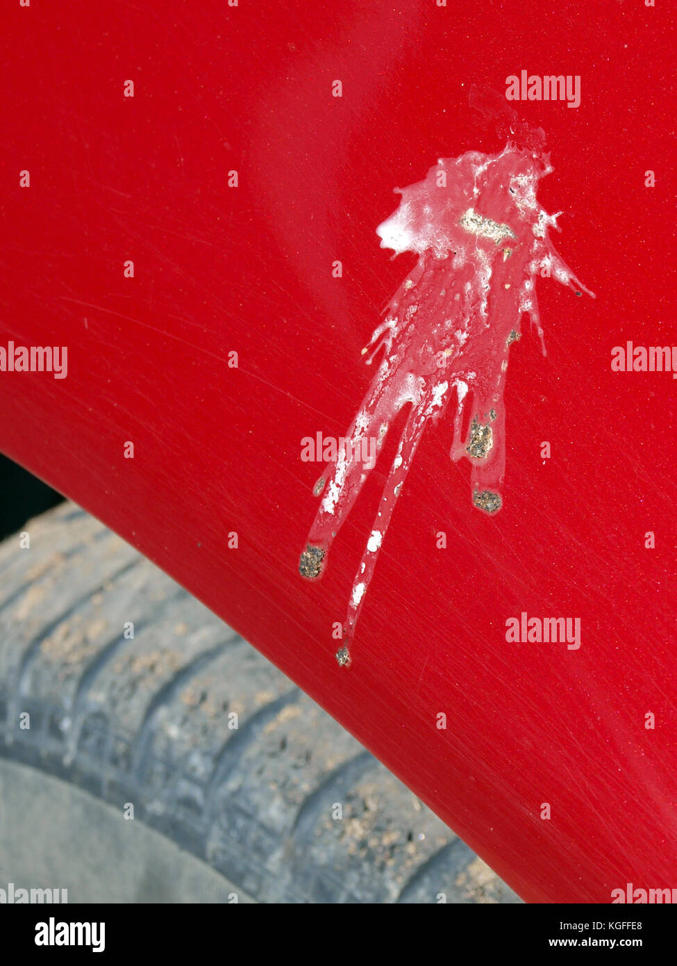 Bird droppings splash on red car body surface - Stock Image