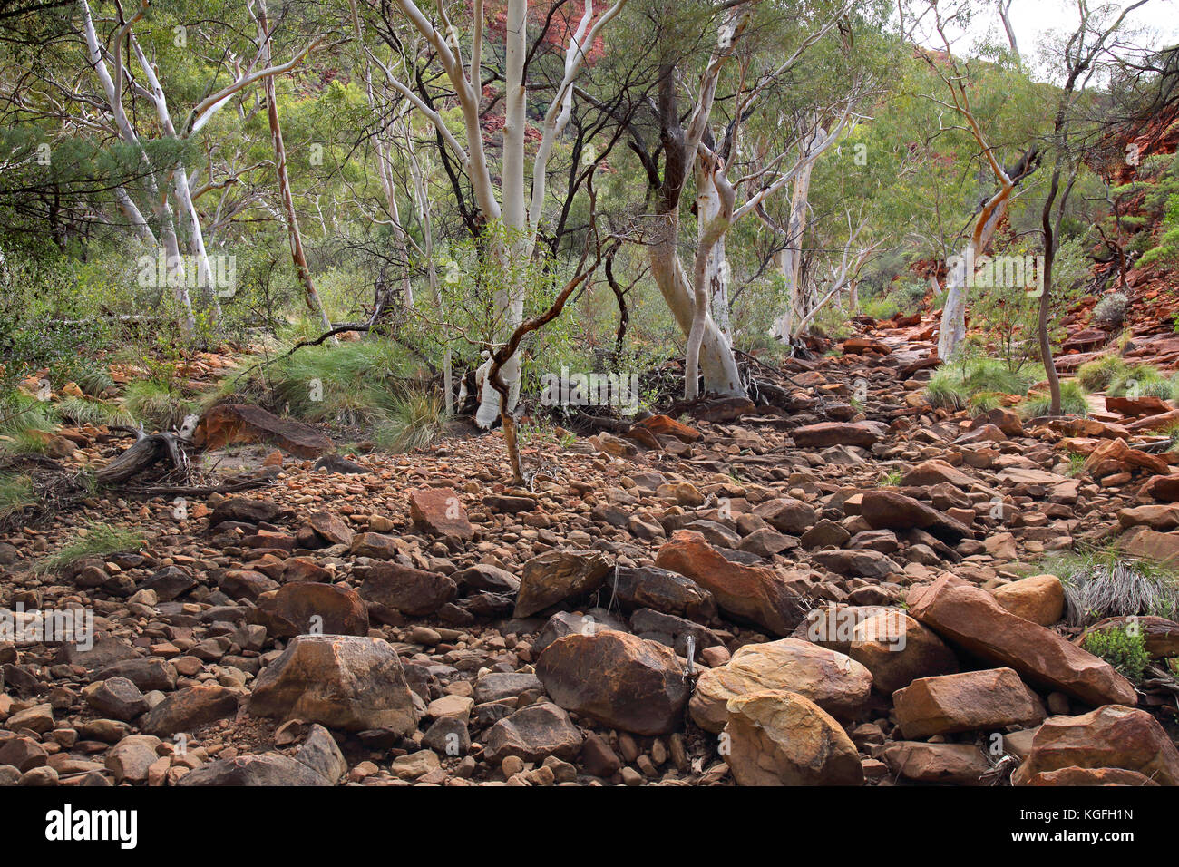 kings canyon creek and dried up   riverbed  in the northern territory outback  australia Stock Photo