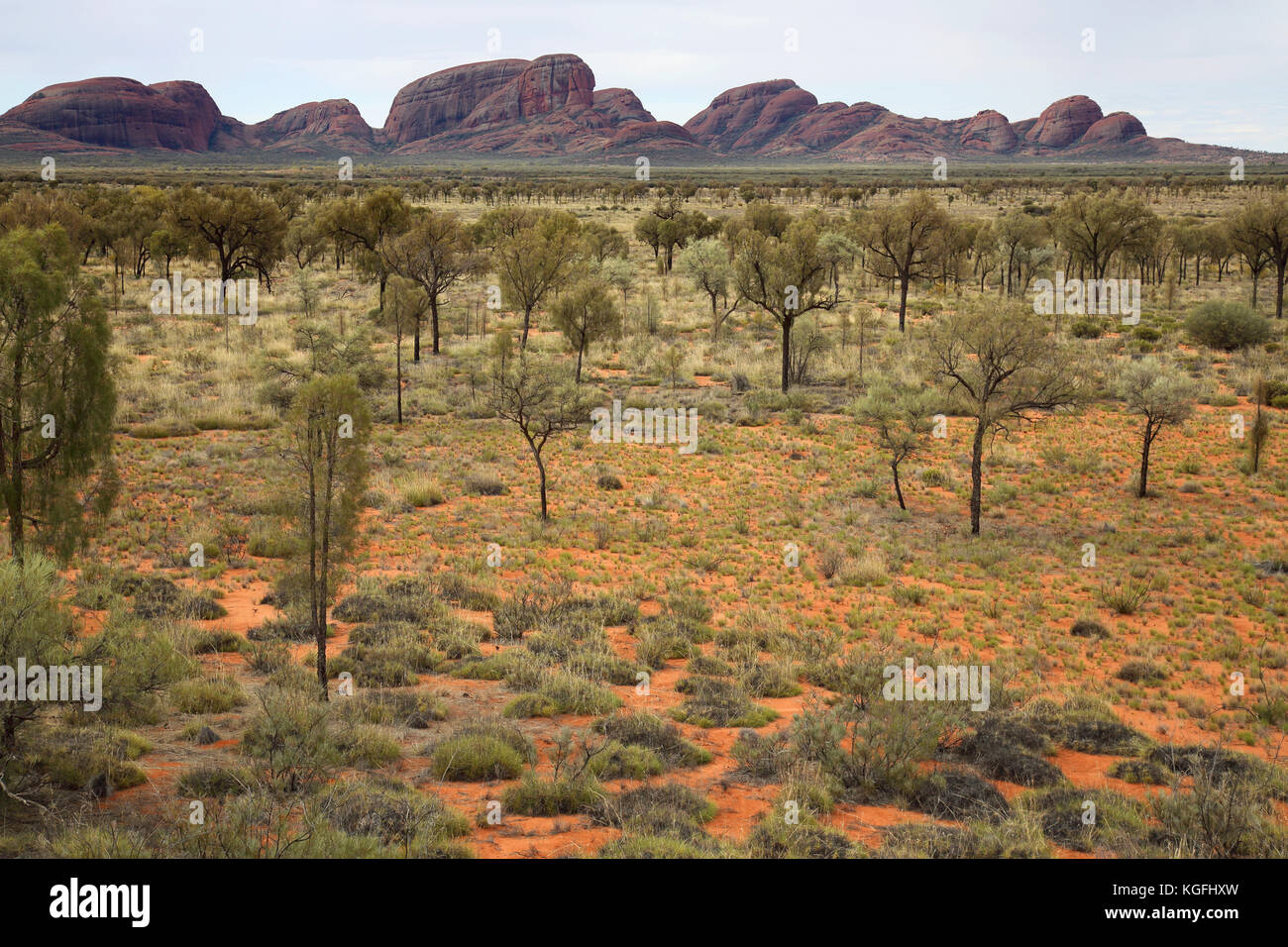 dunes in the australian outback near the olgas in the northern territory australia - Stock Image