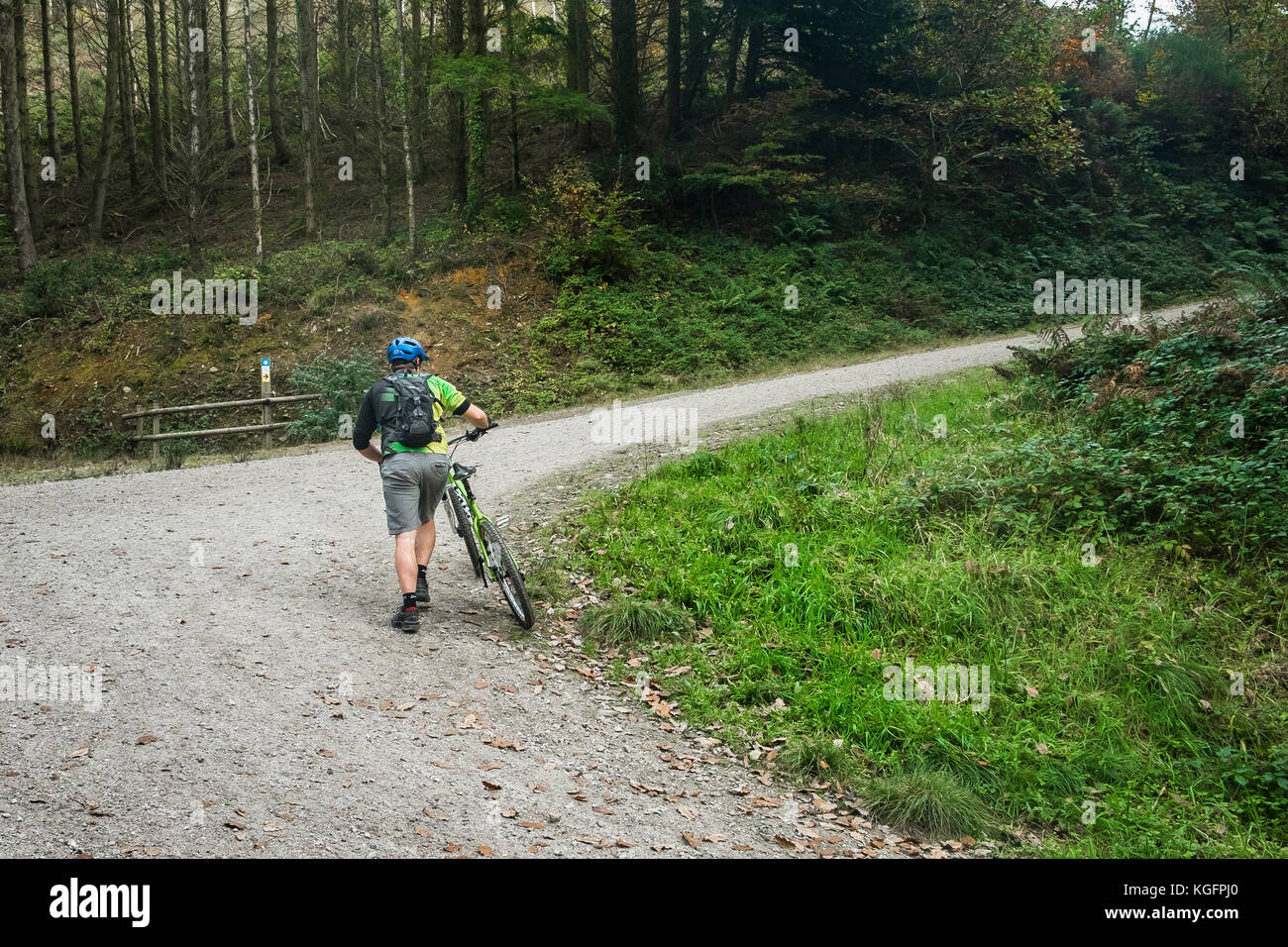 A mountain biker pushing his mountain bike up a steep track in Cardinham Woods in Cornwall. - Stock Image