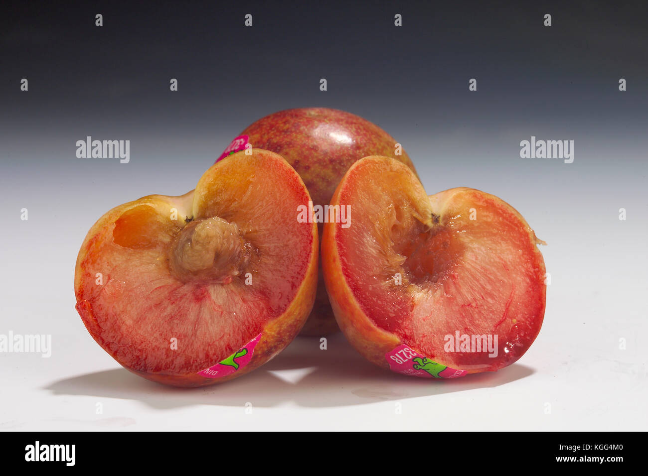 DINOSAUR EGG PLUOT WHOLE AND HALF IN STUDIO - Stock Image