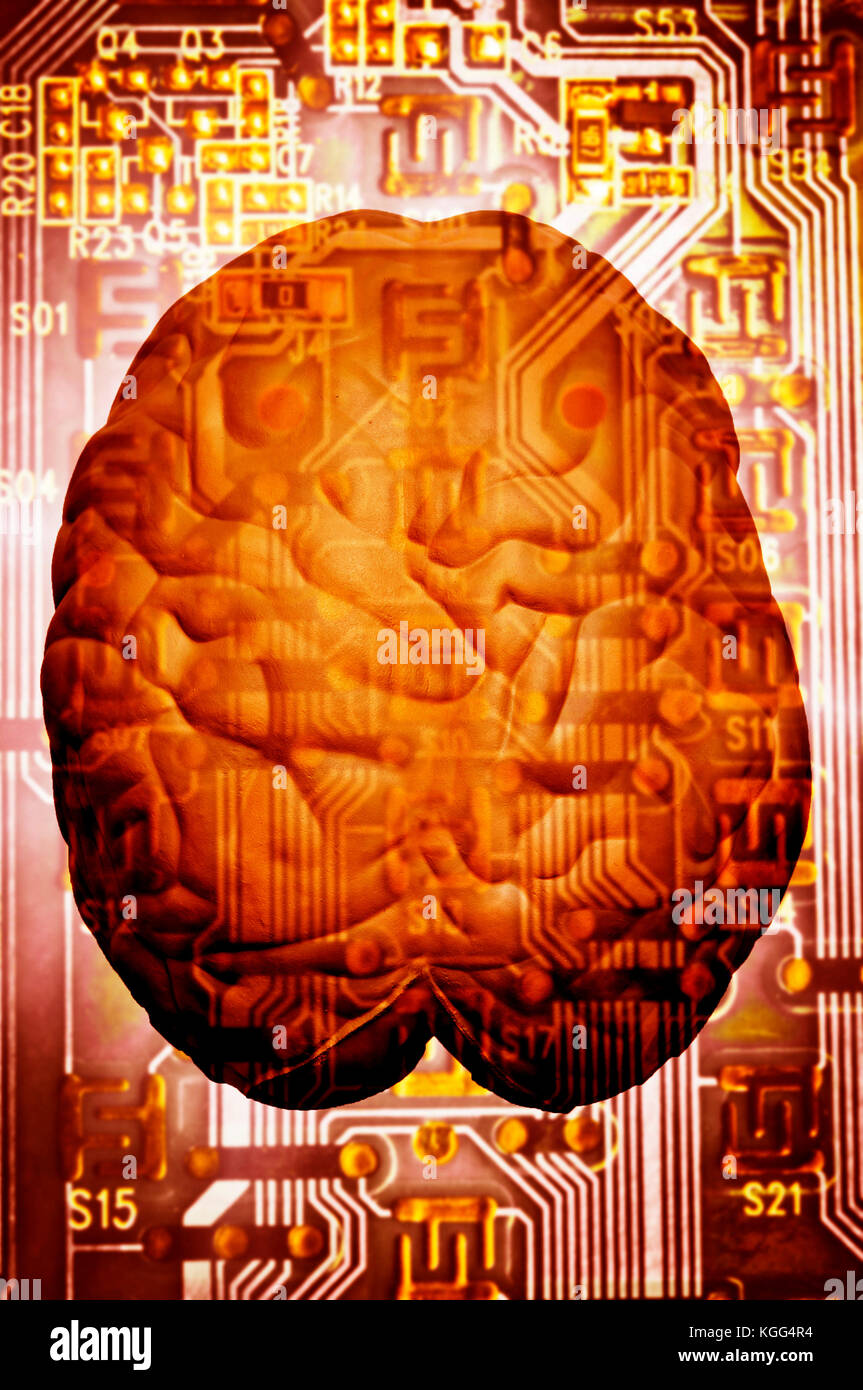 electronics component and human brain, wired brain concept - Stock Image