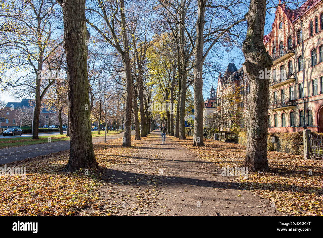 The Southern Promenade  in Norrkoping. Norrkoping is a historic industrial town and the Boulevards in Paris inspired - Stock Image