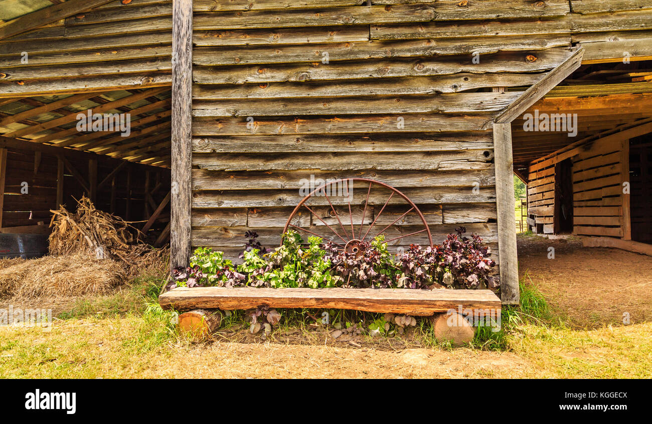 Super Rustic Bench Flowers Stock Photos Rustic Bench Flowers Dailytribune Chair Design For Home Dailytribuneorg