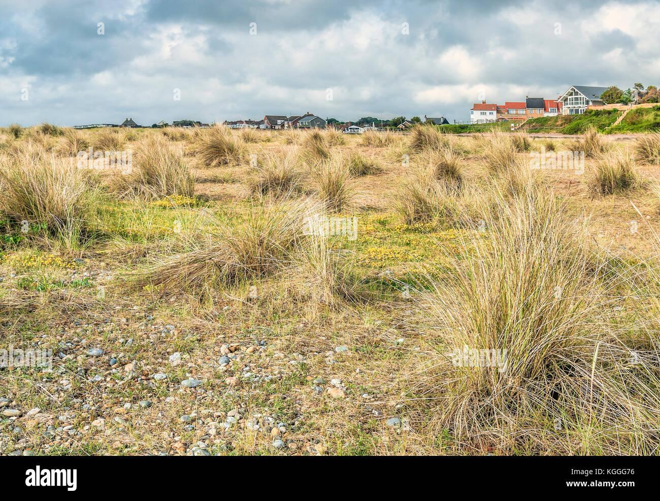 Coastal Marsh Landscape near the Village of Kessingland in East Anglia, England. Coastal Marsh Landscape near the - Stock Image