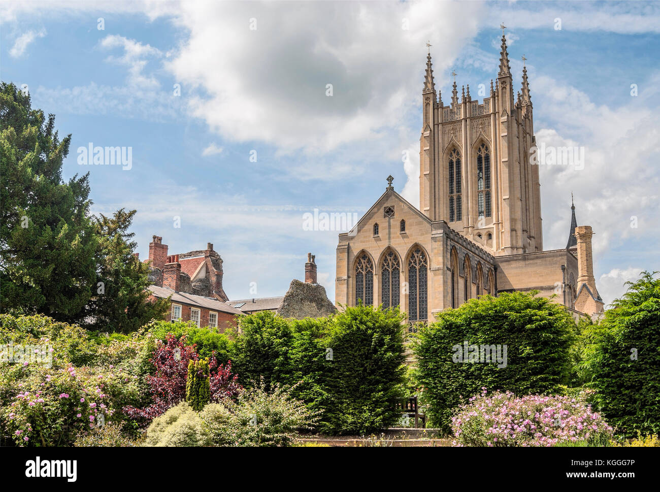 St. Edmundsbury Cathedral churchyard, the cathedral for the Church of England's Diocese of St Edmundsbury and - Stock Image