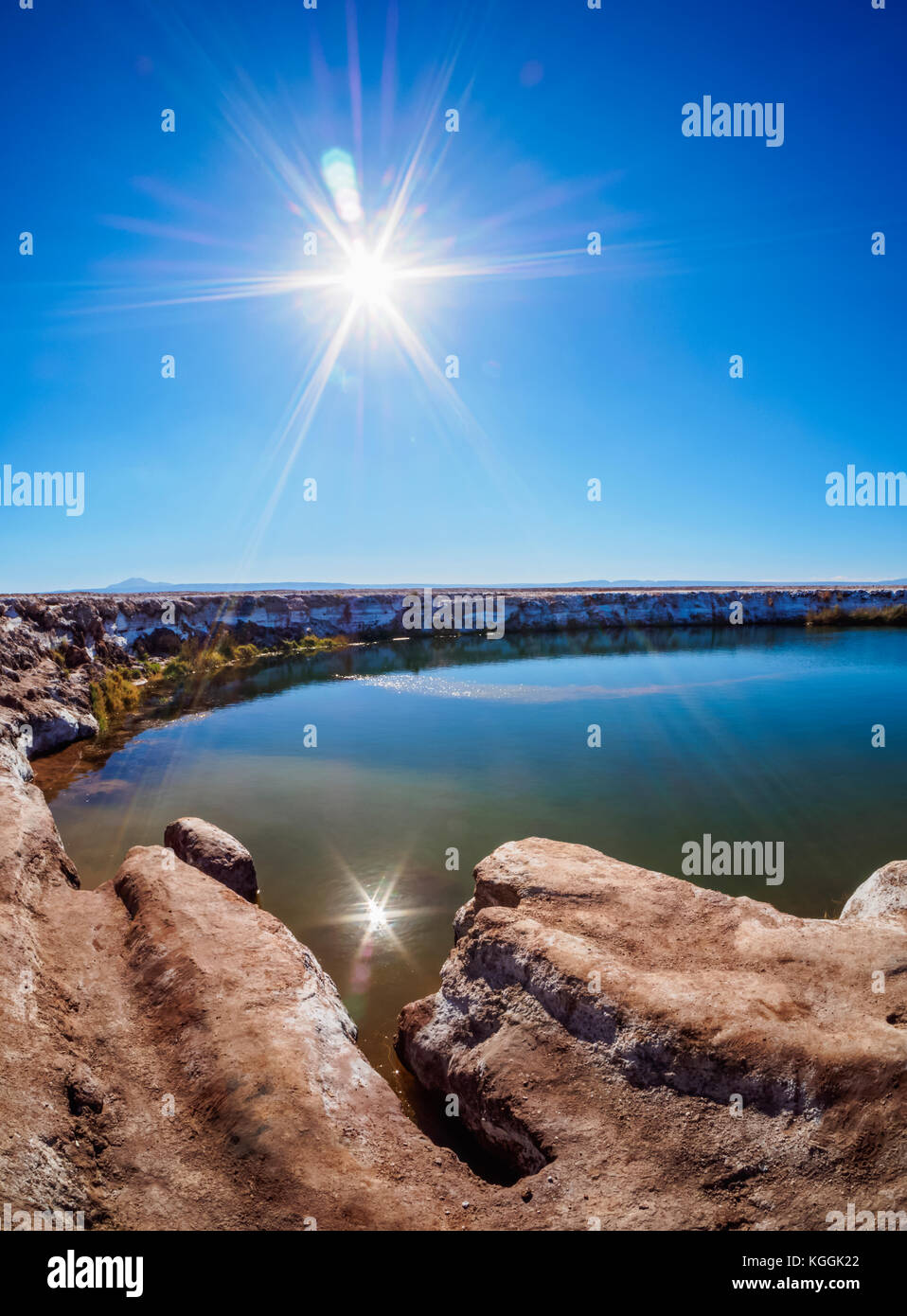 Ojos del Salar Lagoon, Salar de Atacama nearby San Pedro de Atacama, Antofagasta Region, Chile Stock Photo