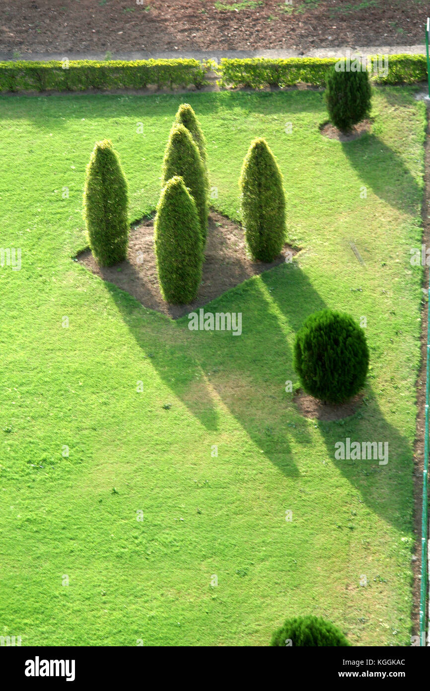 Artistically trimmed bushes stand attractively in garden - Stock Image