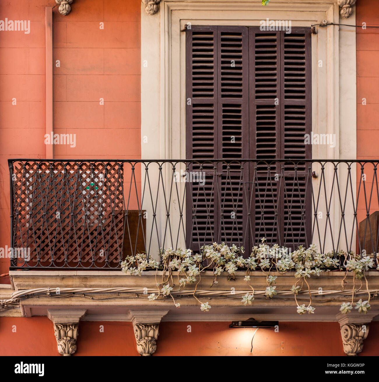 Succulent trails off balcony of rustic townhouse in Palma de Mallorca - Stock Image