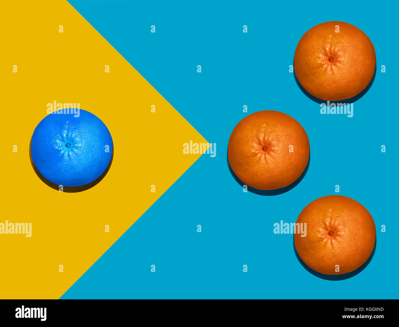 Grapefruit in flat lay Ripe orange and blue grapefruits are lying on two-tone background Top view Trendy colorful - Stock Image