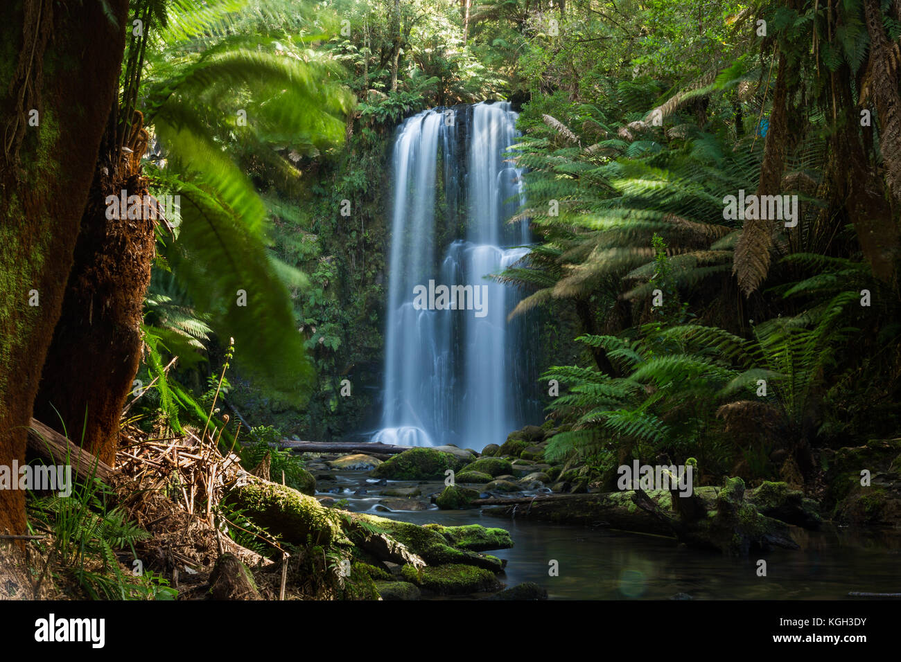 A waterfall called Beauchamp Falls located at Beechforest on the Great Ocean Road. Victoria - Stock Image