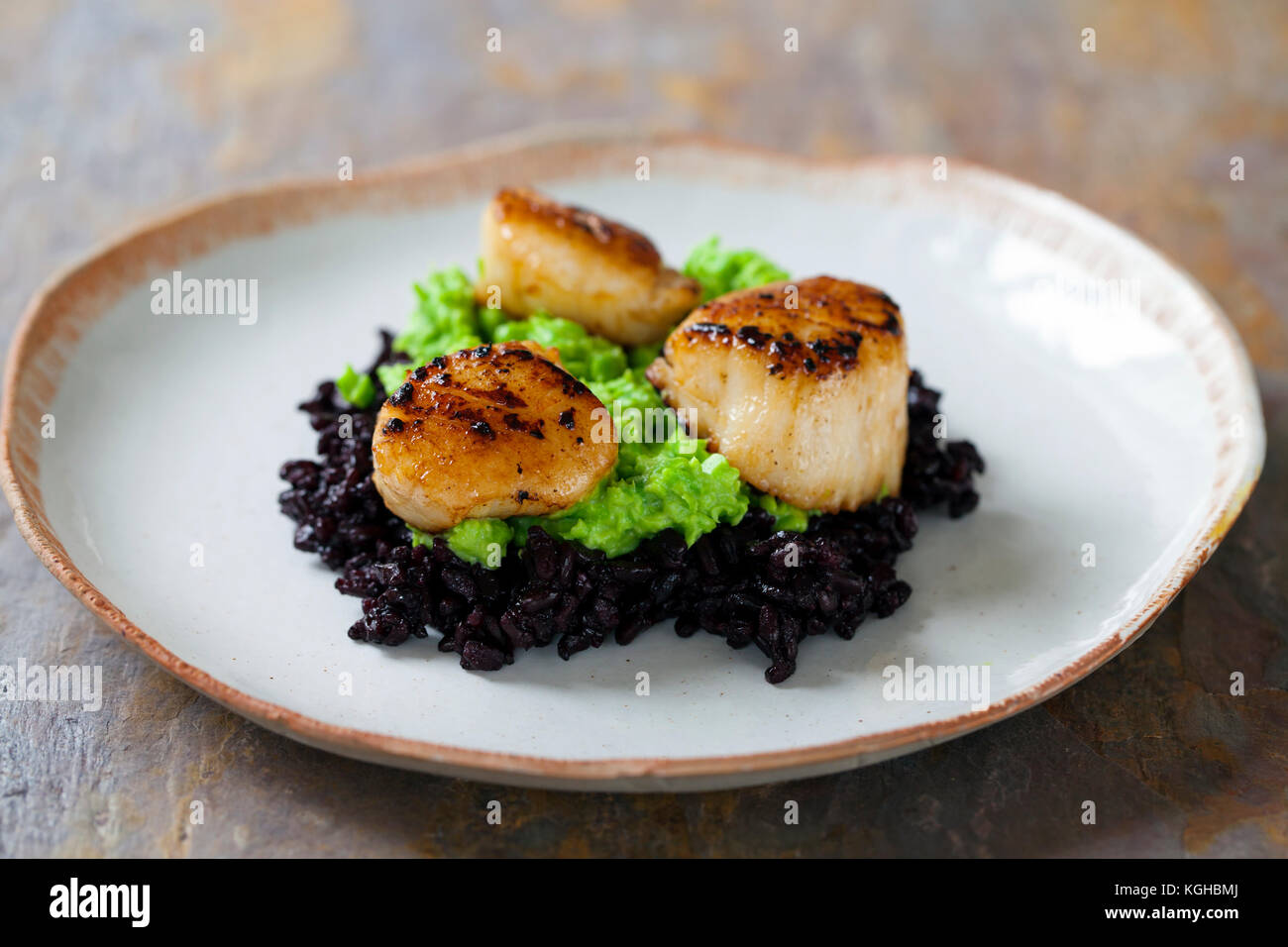 Scallops with black forbidden rice and pea puree - Stock Image