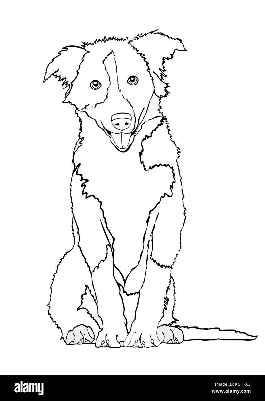 Dog vector outline drawing sketch coloring book black and white contour cartoon shaggy dog full length isolated on white