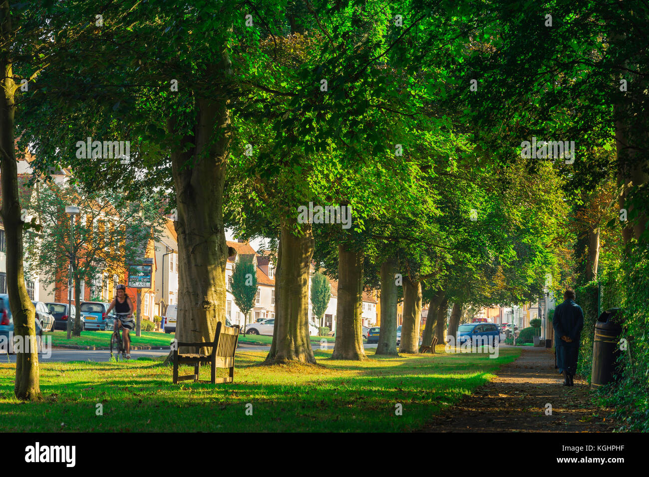 Clare Suffolk village, tree-lined Nethergate Street in the historic village of Clare in Suffolk on a summer morning, - Stock Image
