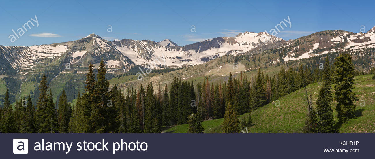 Baxter Basin near Crested Butte Colorado in early summer with snow covered peaks in the distance. - Stock Image