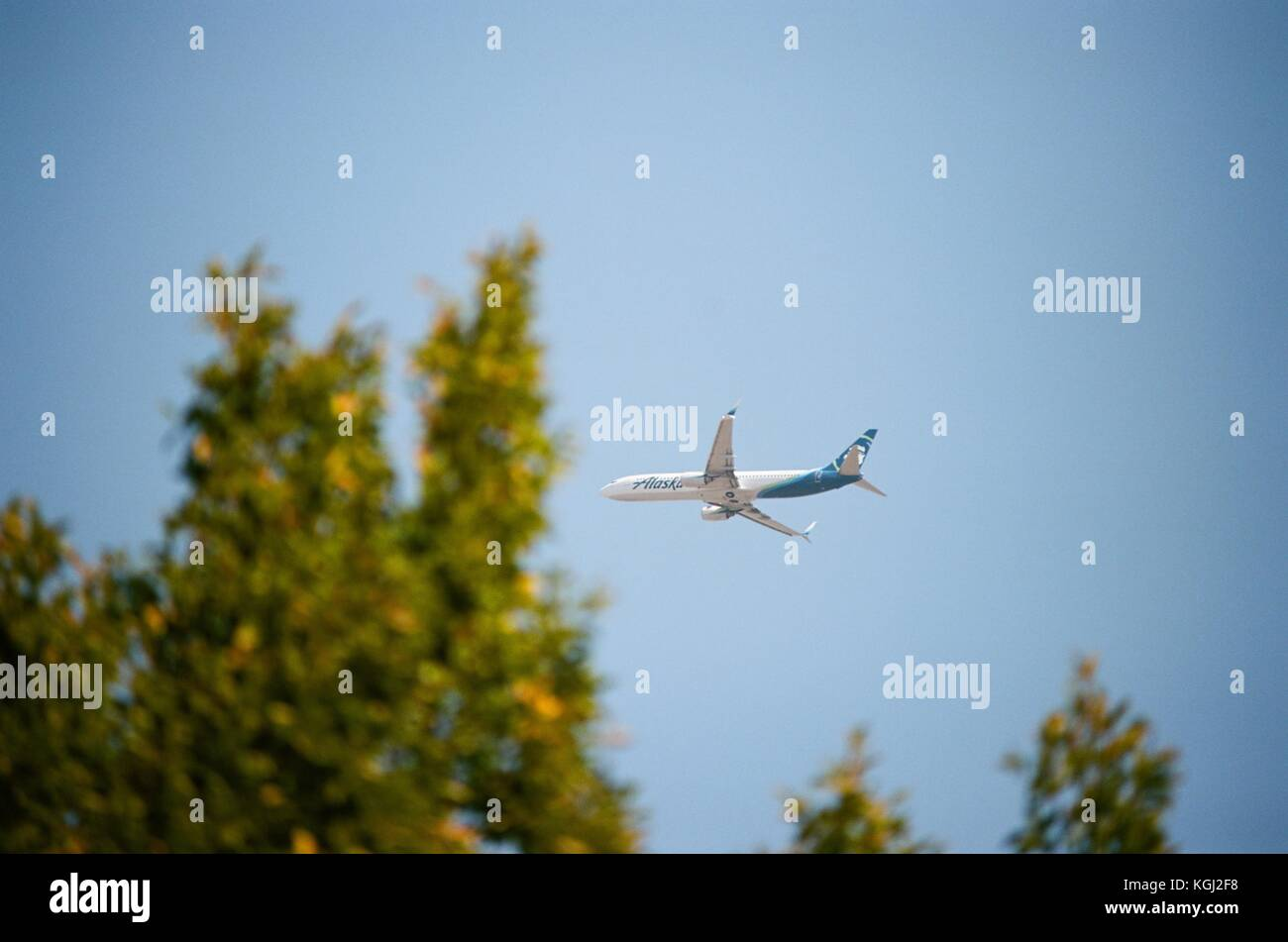 Alaska airlines stock photos alaska airlines stock images alamy jet aircraft for alaska airlines with logo visible flying over the silicon valley town buycottarizona Choice Image