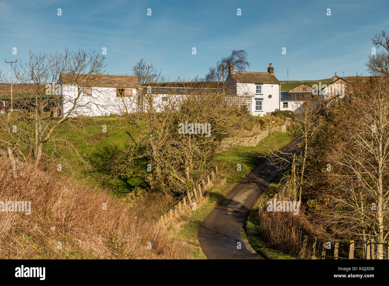 UK Hill Farm, Bank Top Farm, Ettersgill, Upper Teesdale in strong autumn sunshine under a clear blue sky November - Stock Image