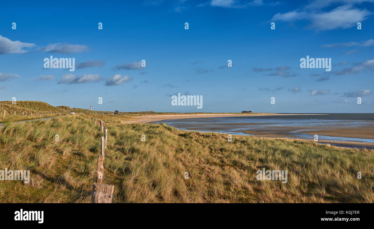 Exposed estuarine mud flats at low tide in the Wadden Sea viewed over coastal grasses and a boundary fence in a - Stock Image