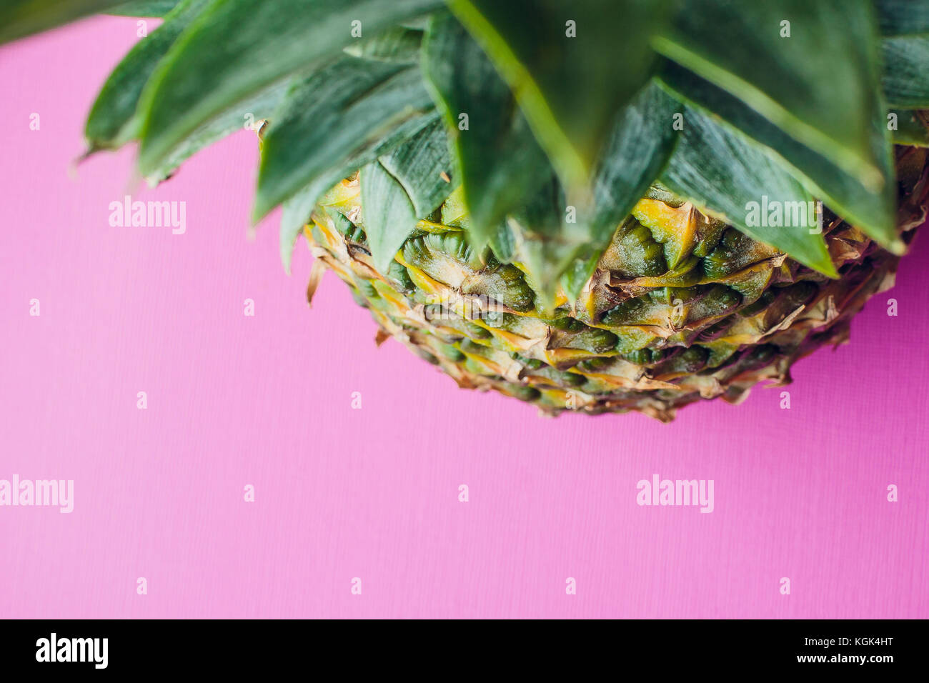 against of fresh pineapple pink - Stock Image