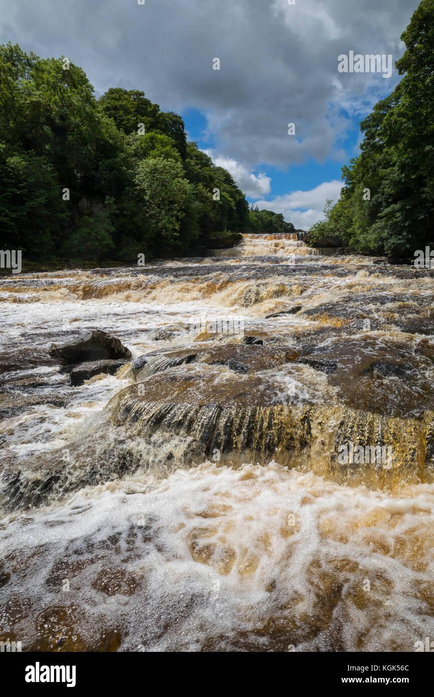 Aysgarth Lower Falls; River Ure; Yorkshire; UK - Stock Image