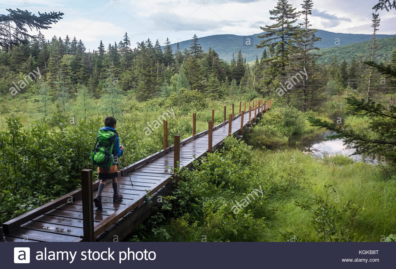 A young boy hikes the Zealand Falls trail to an AMC hut in the beautiful White Mountains. - Stock Image