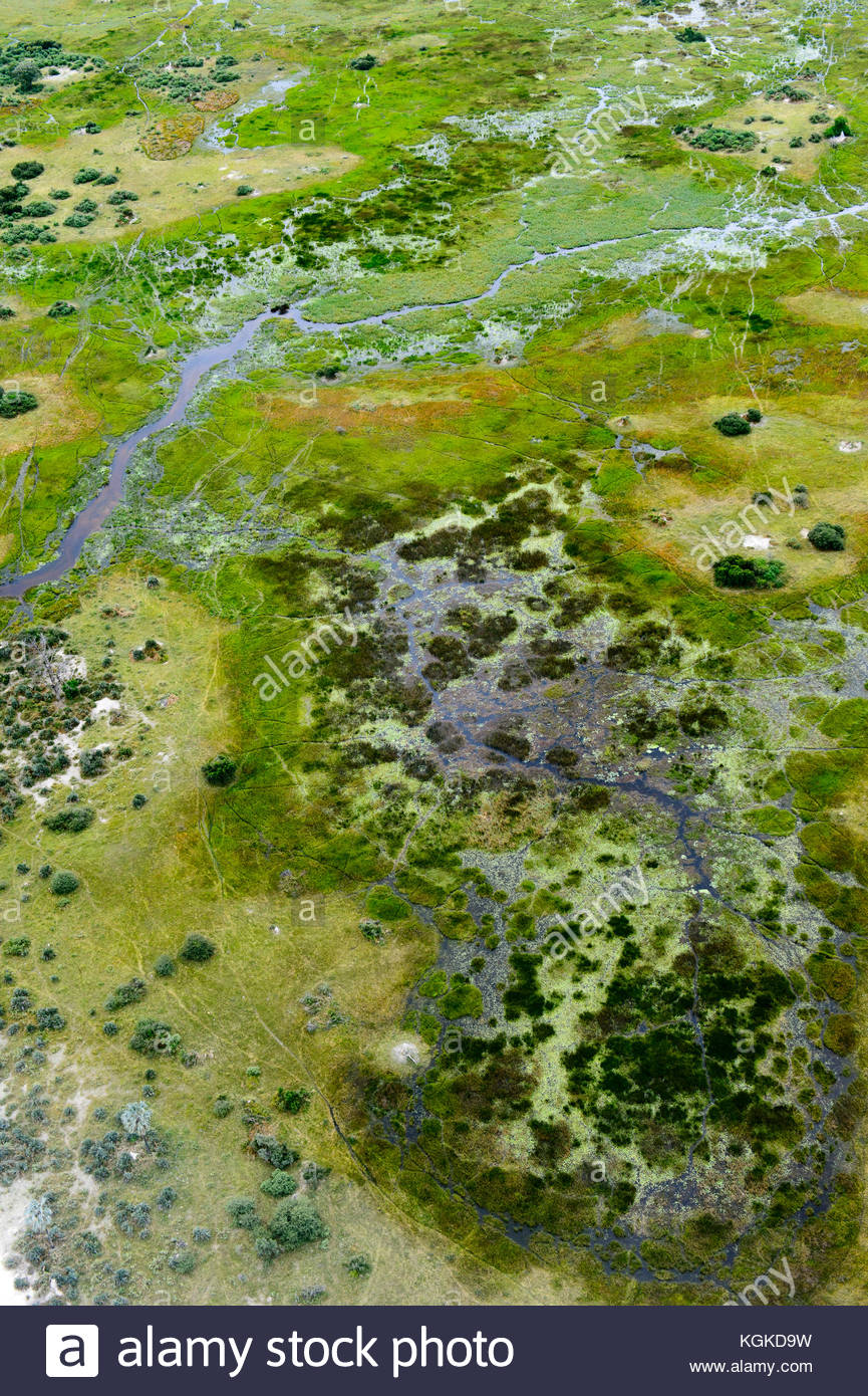 An aerial view of the Okavango Delta and tributary streams. - Stock Image