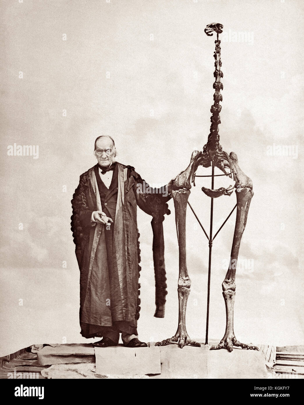 Sir Richard Owen KCB FRMS FRS (1804 – 1892) with a giant moa skeleton, c1879. Owen was an English biologist, comparative - Stock Image