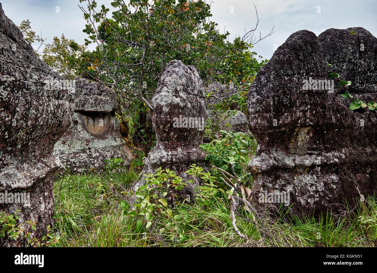 Ciudad de Piedra in National Park of  Serrania de la Macarena, La Macarena, Colombia, South America - Stock Image