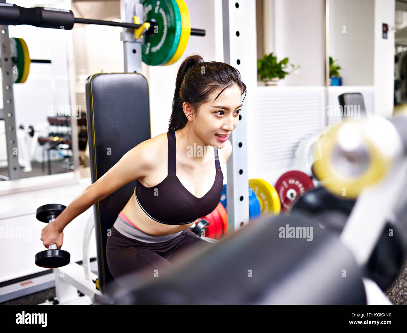 young asian woman working out exercising in gym using dumbbells. - Stock Image