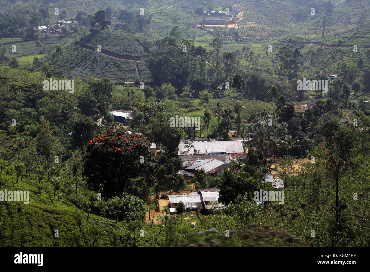 Hill Country Central Province Sri Lanka Tea Pickers Cottages in Village - Stock Image