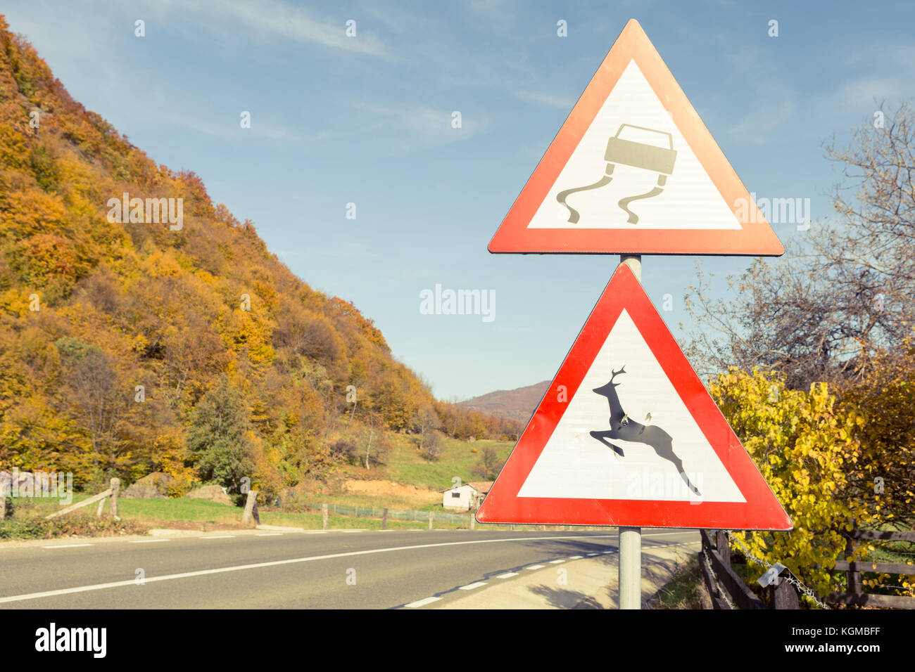 Warning road signs about slippery road and wild animals on sunny autumn or fall season - Stock Image
