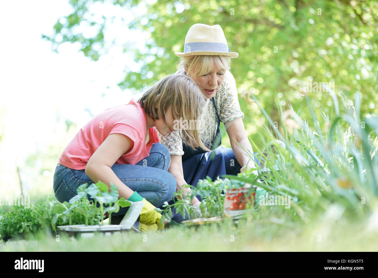 Grandmother and granddaughter gardening together - Stock Image