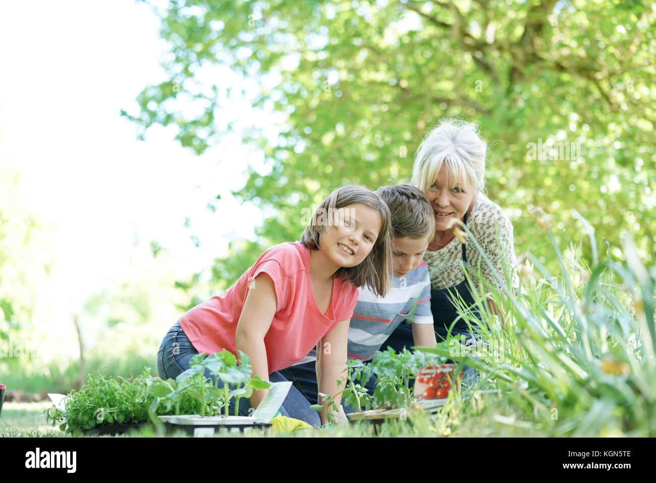 Elderly woman having fun gardening with grandkids - Stock Image