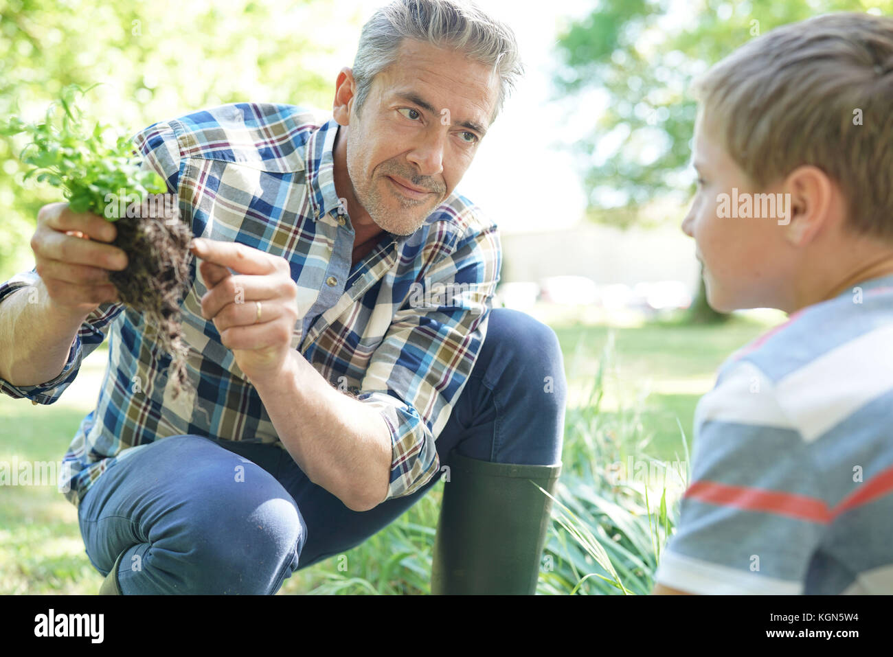 Father teaching son how to plant in vegetable garden - Stock Image