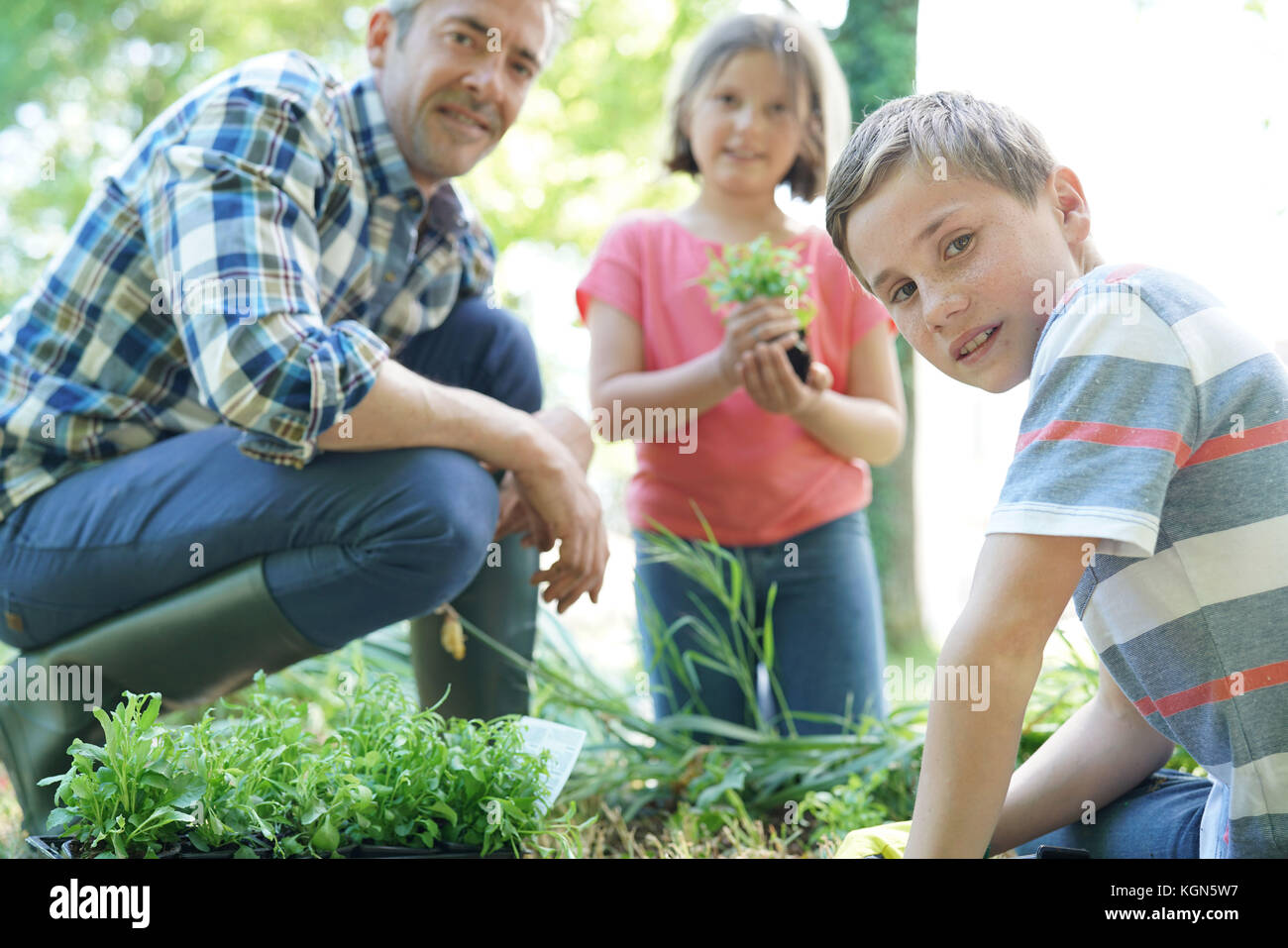 Kids helping daddy with gardening - Stock Image