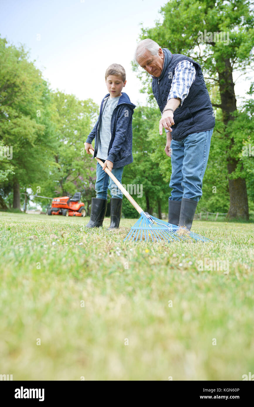 Grandfather with grandkid cleaning garden with rake - Stock Image