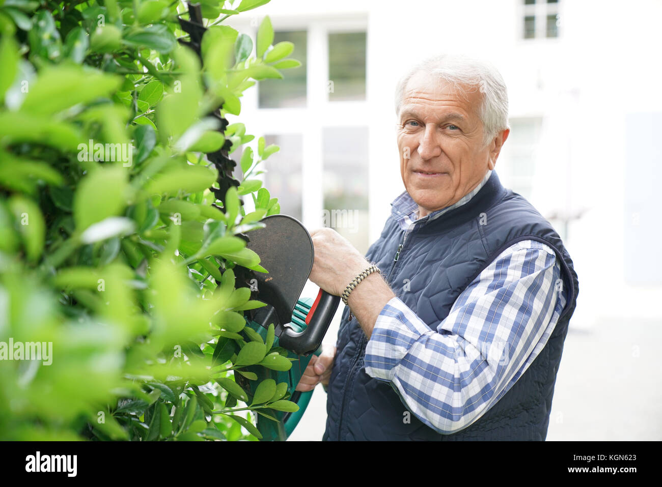 Senior man using hedge trimmer Stock Photo