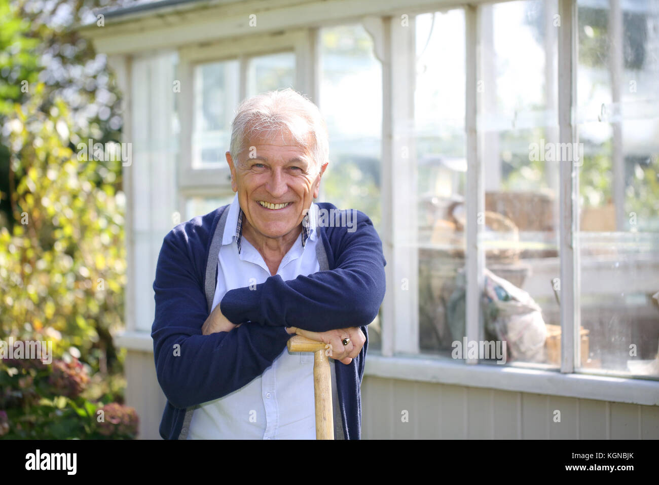 Cheerful senior man standing by greenhouse - Stock Image