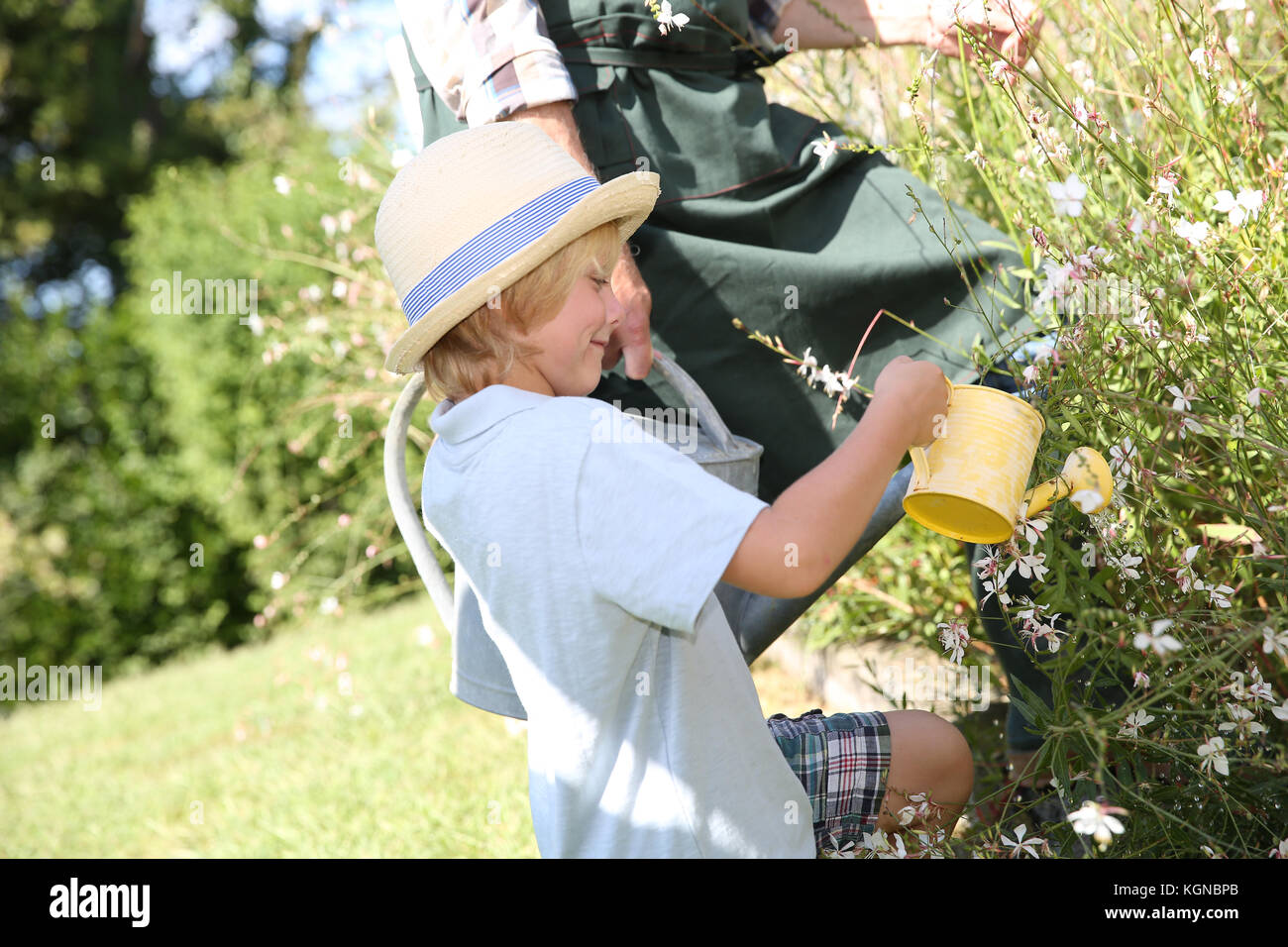Closeup of cute little boy watering flowers in garden - Stock Image