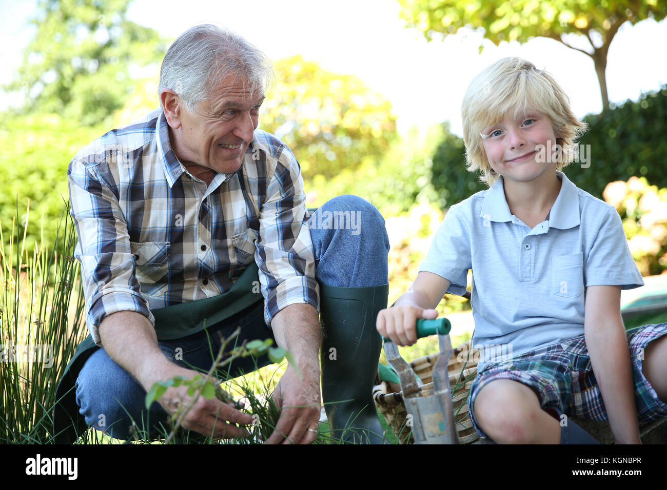 Grandpa with grandson gardening together in summer time - Stock Image