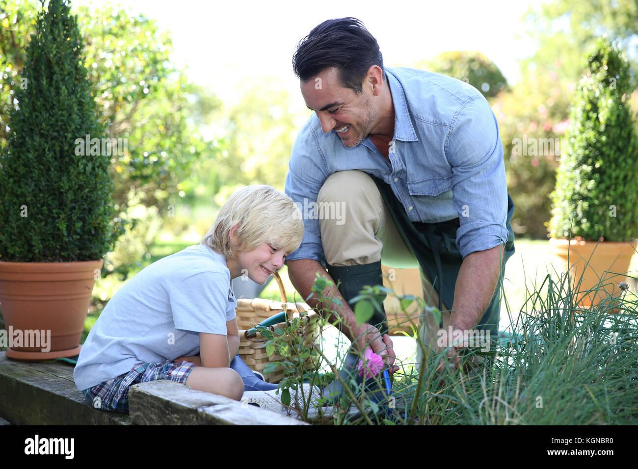 Little boy having fun with daddy gardening - Stock Image