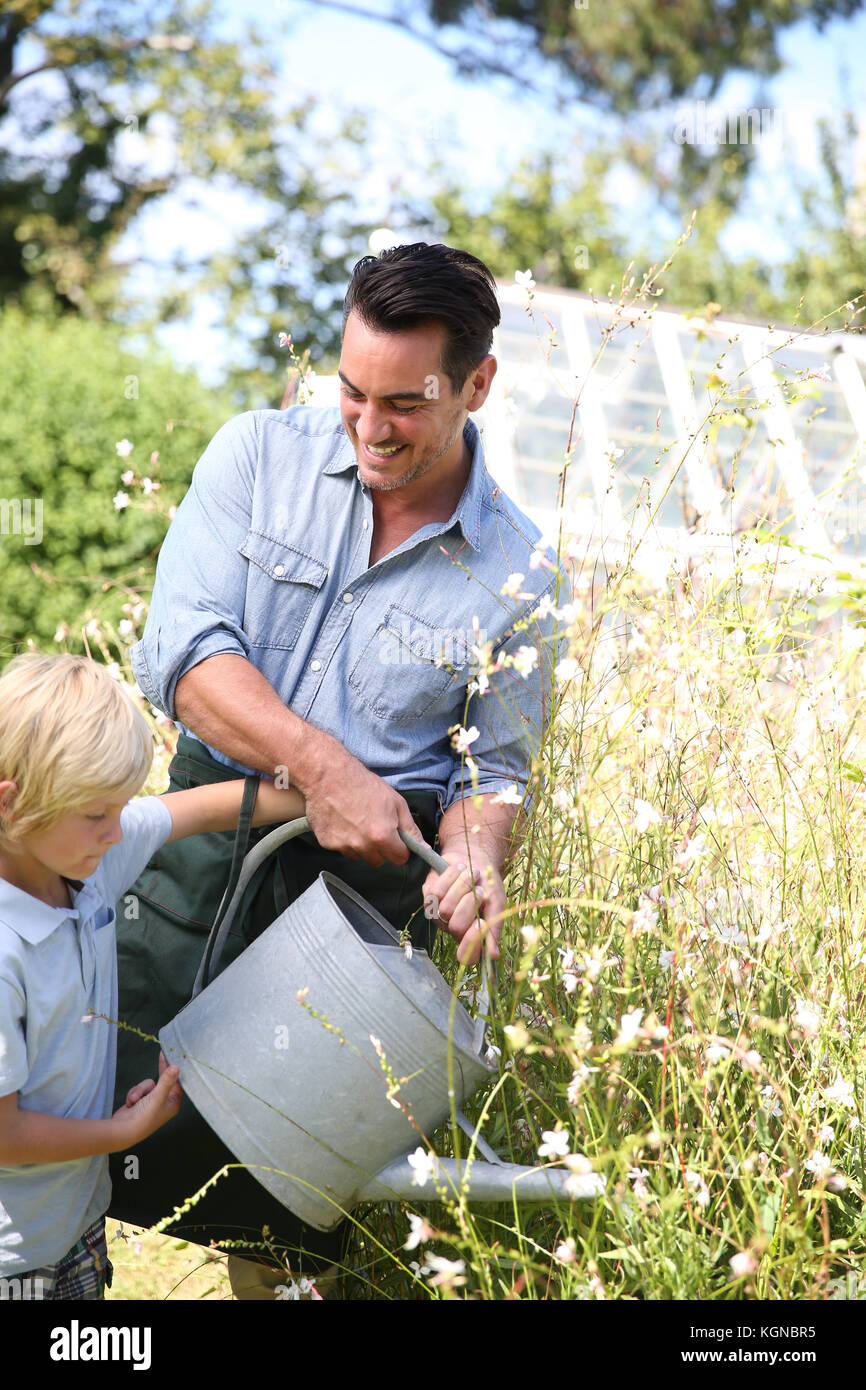 Father and son watering plants in garden - Stock Image